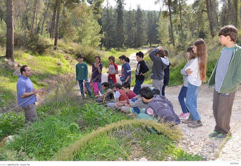 הנוער מקשיב להסברים על מה מלקטים, ואיך. צילום: גלית לוינסקי