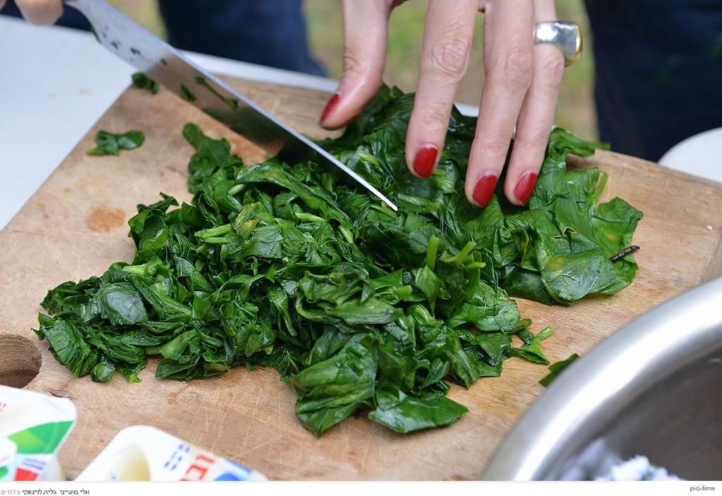 קוצצת עלי לופית לתבשיל עם חמציץ. זה יהיה רירי וירוק וטעים. צילום: גלית לוינסקי