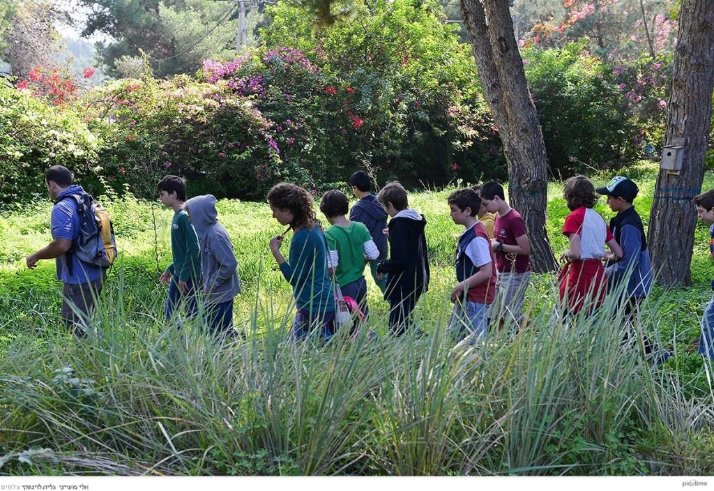 הנערים יוצאים אל היער ללקט. צילום: גלית לוינסקי
