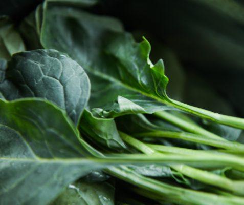 דיאטת ירוקים. אומינה רונית כפיר